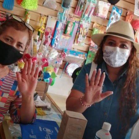 Propone Rosa Icela Díaz, creación de  programas crediticios para impulsar a las empresas